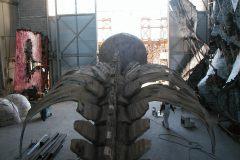 dentro l'hangar